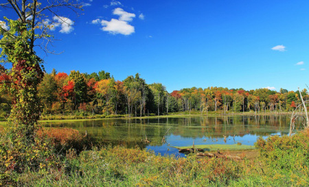 aaautumn-at-potato-creek-state-park